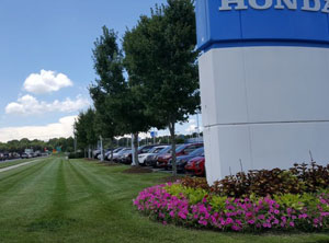 Commercial Auto Dealers Landscaping and ground maintenance